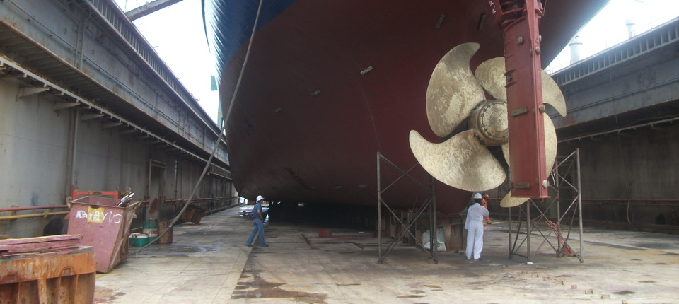 Survey to vessel on dry-dock. | Cargoinspect Inc.